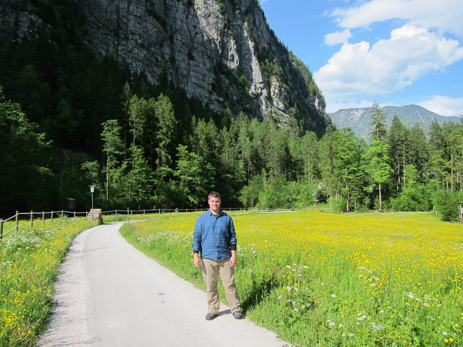 Meadow near Hallstatt